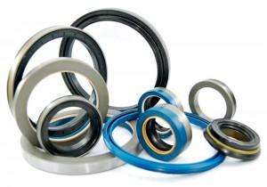 rubber-oil-seals-1143729
